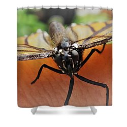 Monarch Greeting Shower Curtain
