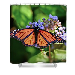 Shower Curtain featuring the photograph Monarch In The Mist by Kerri Farley