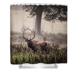 Shower Curtain featuring the photograph Monarch In The Mist by Michael Dougherty