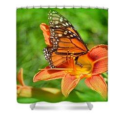 Monarch Minutes Shower Curtain
