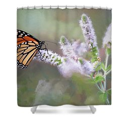 Shower Curtain featuring the photograph Monarch On Mint 1 by Lori Deiter