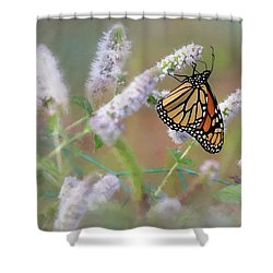 Shower Curtain featuring the photograph Monarch On Mint 2 by Lori Deiter