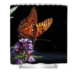 Monarch On Purple Flowers Shower Curtain
