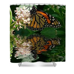 Monarch Reflection Shower Curtain