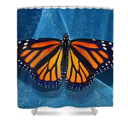 Monarch Royalty Shower Curtain