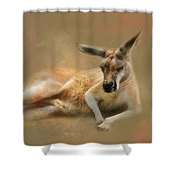 Monday Morning Drowsies Kangaroo Art Shower Curtain