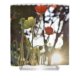 Monday Morning Sunrise Shower Curtain