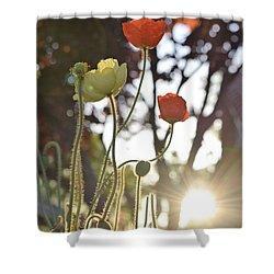 Monday Morning Sunrise Shower Curtain by John Glass