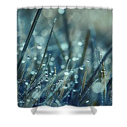Mondo - S04 Shower Curtain by Variance Collections