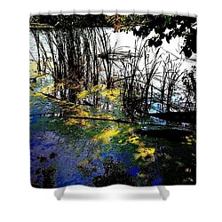 Monet Ice Age Pond Shower Curtain