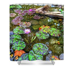 Monet's Pond At The Fair Shower Curtain by Jame Hayes
