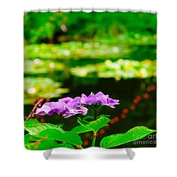 Monet's Purple Lace Hydrangeas  Shower Curtain