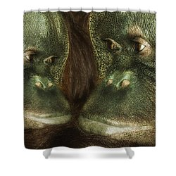 Monkey Love Shower Curtain