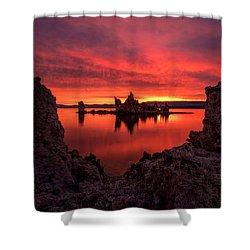Mono Blaze Shower Curtain by Bjorn Burton