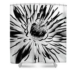 Mono Clematis Shower Curtain by Baggieoldboy