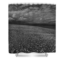 Mono Cunnigar Beach Shower Curtain
