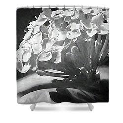 Monochrome Flora Shower Curtain