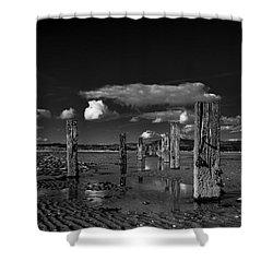 Monochrome Groynes Shower Curtain