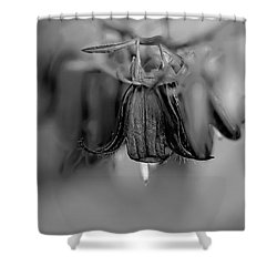 Shower Curtain featuring the photograph monochrome Harebells Or Bluebells by Leif Sohlman
