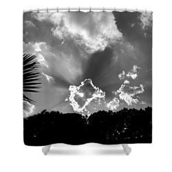 Monochrome Sunburst Shower Curtain