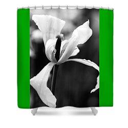 Monochrome Tulip Shower Curtain
