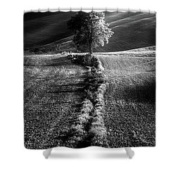 Monochrome Valley Shower Curtain