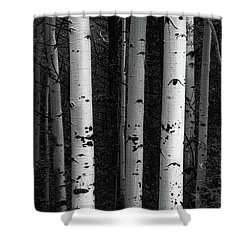 Shower Curtain featuring the photograph Monochrome Wilderness Wonders by James BO Insogna