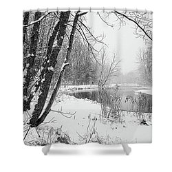 Monotone Season Shower Curtain by Betsy Zimmerli