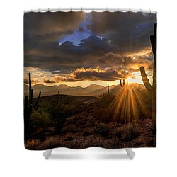 Monsoon Sunburst Shower Curtain