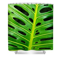 Monstera Leaf Shower Curtain by Carlos Caetano