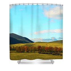 Montana Fall Trees Shower Curtain