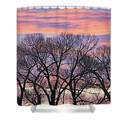 Shower Curtain featuring the photograph Montana Sunrise Tree Silhouette by Jennie Marie Schell