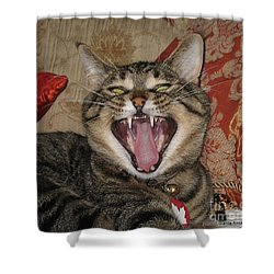 Monty's Yawn Shower Curtain by Jolanta Anna Karolska