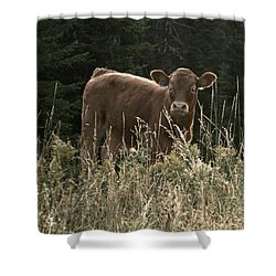 MOO Shower Curtain by Tiffany Vest
