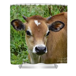 Fairytale Cow Shower Curtain