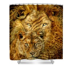Shower Curtain featuring the mixed media Moods Of Africa - Lions 2 by Carol Cavalaris