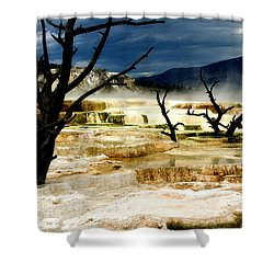 Moody Minerva Shower Curtain by Lana Trussell