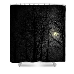 Moody Moon Shower Curtain
