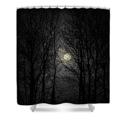 Moody Moon Shower Curtain