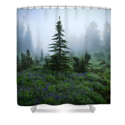Moody Myrtle Falls Trail At Mount Rainier Shower Curtain by Lynn Hopwood