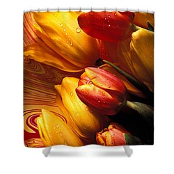 Moody Tulips Shower Curtain by Garry Gay