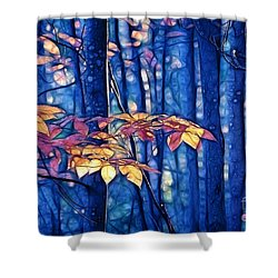 Shower Curtain featuring the photograph Moody Woods by Aimelle