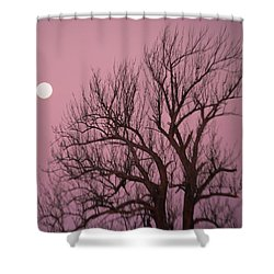 Moon And Tree Shower Curtain