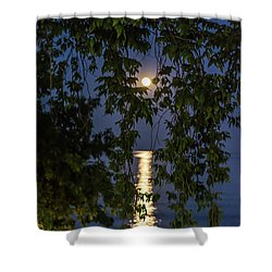 Moon Curtain Shower Curtain