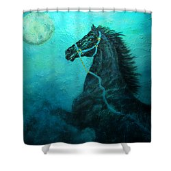 Moon Dance Shower Curtain by The Art With A Heart By Charlotte Phillips