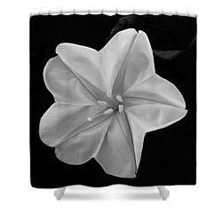 Moon Flower Shower Curtain