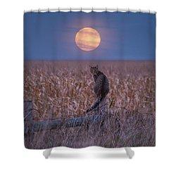 Moon Kitty  Shower Curtain
