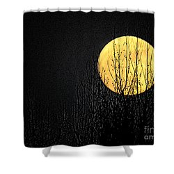 Moon Over The Trees Shower Curtain