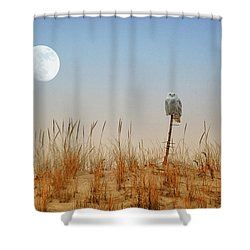 Moon Rise Snowy Owl Shower Curtain