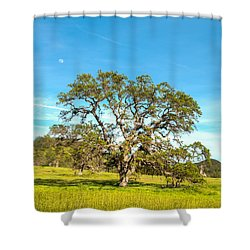 Moon Rising Meadow With Wild Flowers Shower Curtain